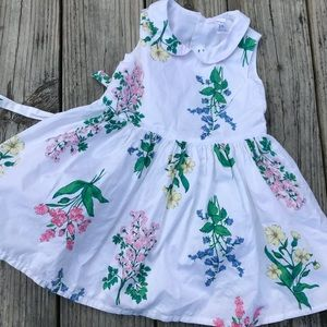 Botanical print, girls party dress (24 mo)